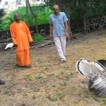 Swami Sevyanandaji visiting our aviary.