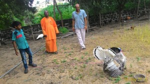 Swami Sevyanandaji visiting our aviary.